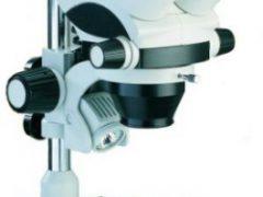 Estereomicroscópio BEL Photonics STM Pro